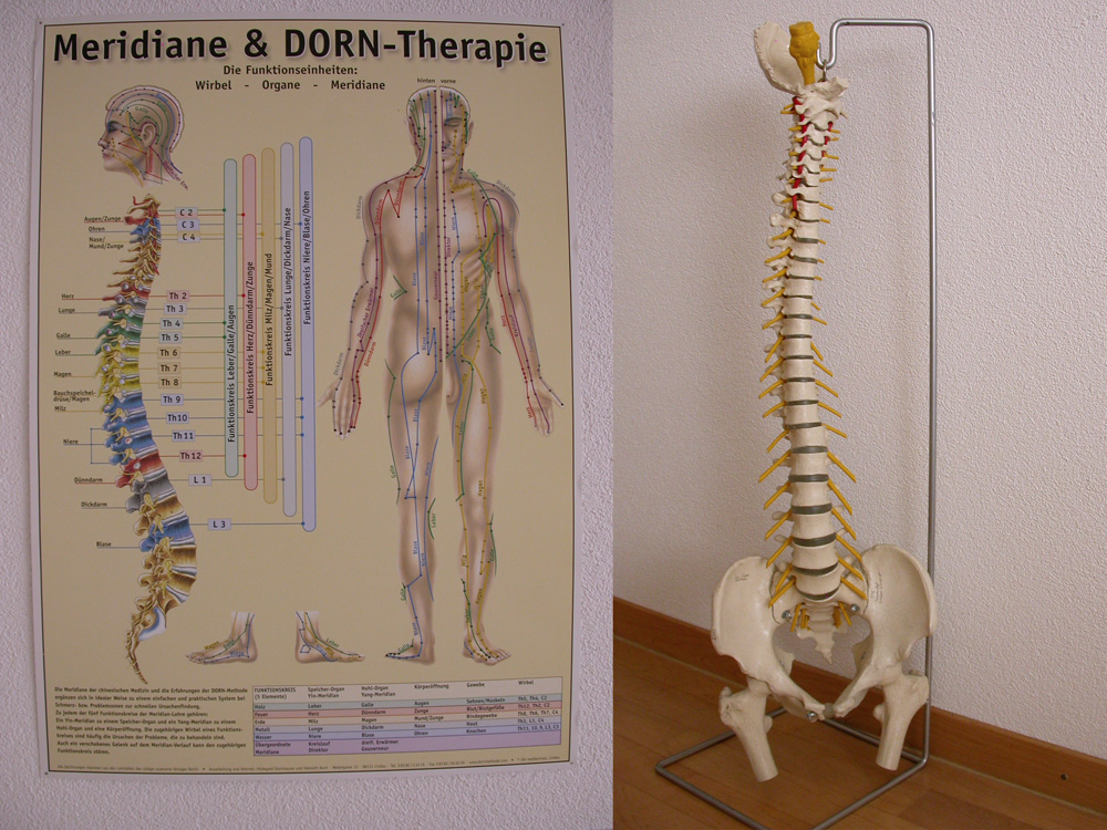 Dorntherapie_1